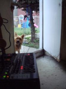 recording_summerrain2